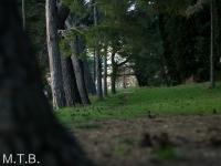 priprave_2014_051