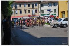Rivignano 2013
