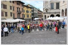 Udine - Martignacco 2013